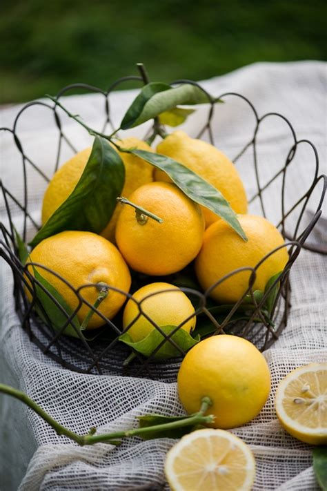 meyer lemon check out whiteonrice 39 s store of stock and print