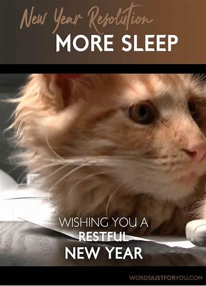 Resolution Rest Sleep Happy Funny Arts Meme