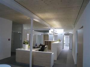 Ventilator An Der Decke : decken holzvogel kologisches bauen und wohnen ~ Michelbontemps.com Haus und Dekorationen