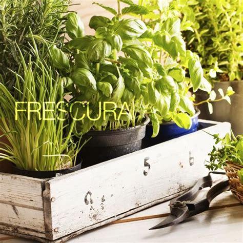 Cómo plantar una huerta en casa en primavera Tipos