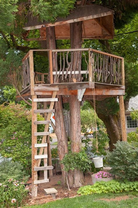 pin  treehouse