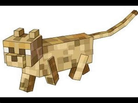 How To Draw An Ocelot From Minecraft Youtube