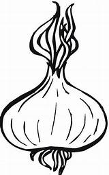 Onion Coloring Onions Drawing Pages Printable Supercoloring Vegetables Apple Crafts Clipart Template Printing Vegetable Garlic Sketches Plant Getdrawings Three Categories sketch template