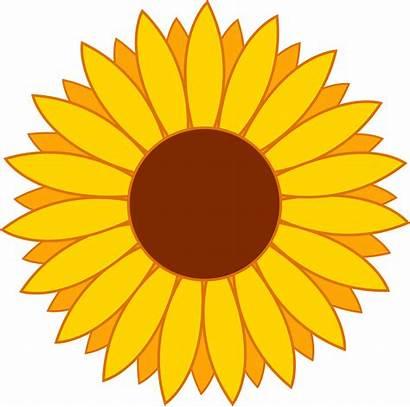 Clipart Sunflower Clip Flowers Yellow Border Iron