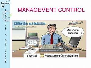 Management Control in Organization