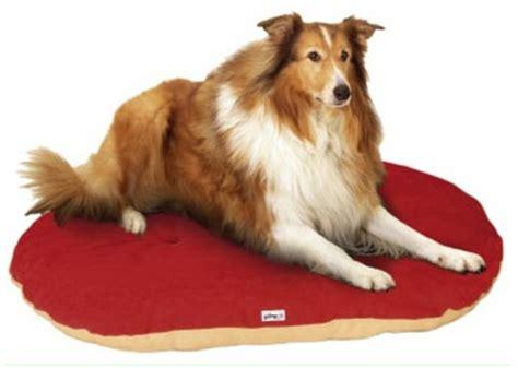 canapé pour grand chien le tapis pour chien grande taille est ici archzine fr