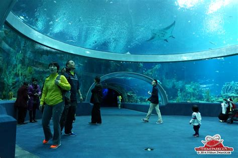world s largest aquarium opens in china page 2