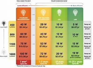 Compare Incandescent Halogen Fluorescent Or Led Light