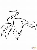 Coloring Stork Sitting Pages Baby Storks Wood Cliparts Printable Library Clipart sketch template