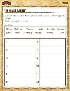 the human alphabet free 2nd grade science worksheets