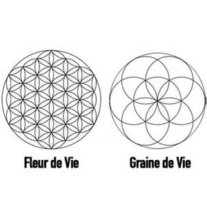 Fleur De Vie Signification by Histoire D Un Logo La Fleur De Vie Vignobles Toutigeac