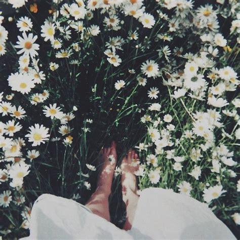 belong   wildflowersyou belong