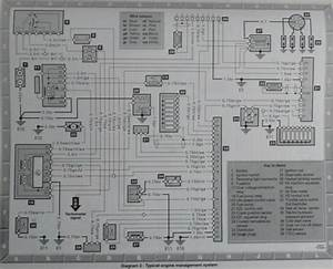 W124 Wiring Diagrams