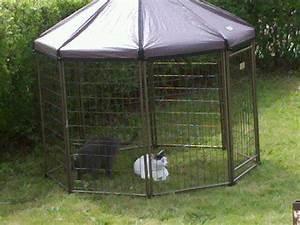 amazoncom advantek pet gazebo outdoor kennel dog run With outdoor dog kennel accessories