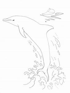 how to draw a dolphin jumping out of water