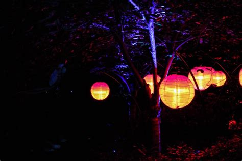 light ticket los angeles tickets to enchanted forest of light at descanso