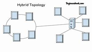 What Are Two Examples Of Hybrid Topologies