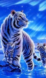 Beautiful | Tiger wallpaper, Cute tigers, Cute wallpaper ...