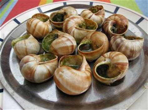 cuisine escargot the traditional quot escargots à la bourguignonne quot