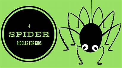 Riddles Spider Insect