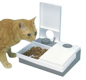 timed cat feeder 15 of the best automatic pet feeders petmoneysaver