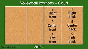 Volleyball Positions on the Court Every Player Should Know