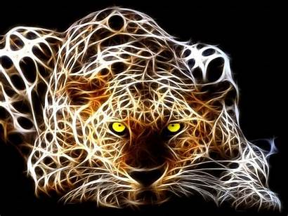 Tiger 3d Wallpapers Backgrounds Cool Tag Animal
