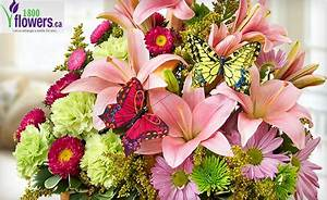 $20 for $40 towards Flower Arrangements from 1-800-Flowers
