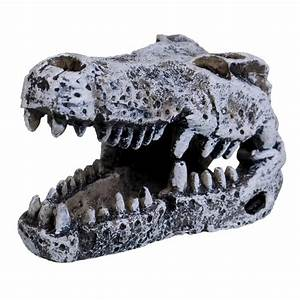 Underwater Treasures Crocodile Skull - Mini