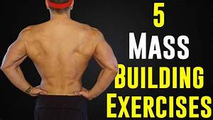 5 Mass Building Back Exercises