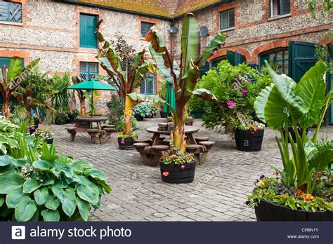 A Courtyard Garden With Containers Of Exotic, Tropical