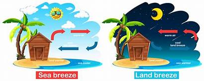 Breeze Land Sea Diagram Circulation Brisa Showing