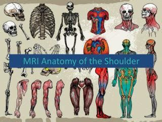 PPT - MRI Anatomy of the Shoulder PowerPoint Presentation ...