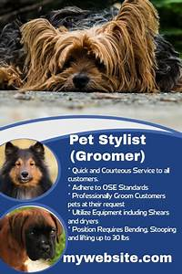 dog walking poster template pet stylist hiring poster template postermywall