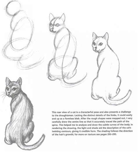 ideas  cat drawing  pinterest simple cat