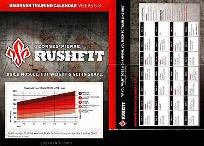 Rushfit Calendar Beginner Gsp Pdf Training Ebook