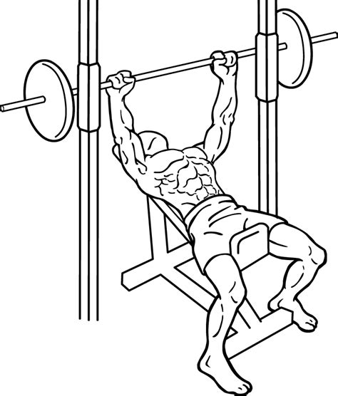 Developper Incliner by Smith Machine Incline Bench An Chest Exercise For