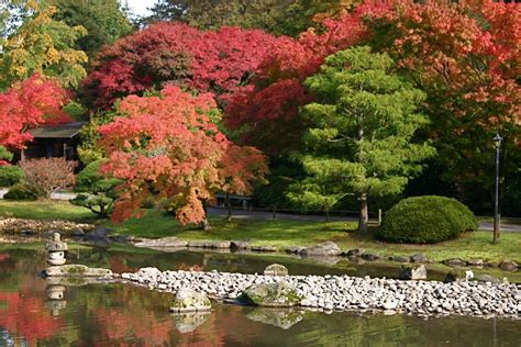 panoramio photo of seattle japanese garden washington