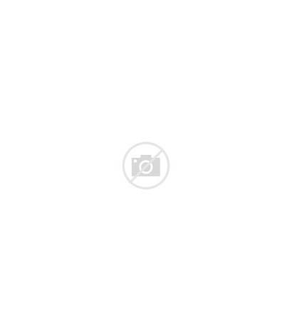 Colectivo Crewneck Sweatshirt Retail