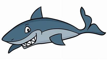 Cartoon Sharks Shark Clip Clipartmag