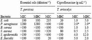 Antibacterial Activity and Chemical Constitutions of ...