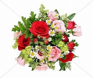 Bilder Blumen Kostenlos Downloaden : blumenstrau mit versch rosen und walderdbeeren lizenzfreies bild 10162417 bildagentur ~ Frokenaadalensverden.com Haus und Dekorationen