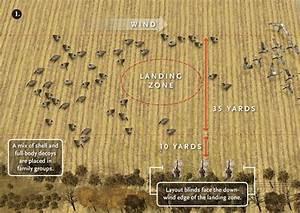 Duck Decoy Spreads Diagrams
