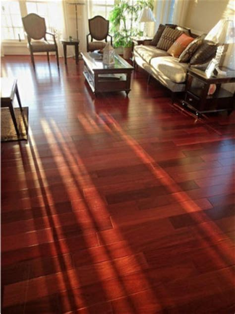 Hardwood Flooring Product Profile: What Is Cumaru?
