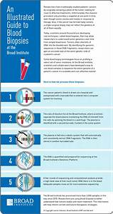 Infographic  An Illustrated Guide To Blood Biopsies At The
