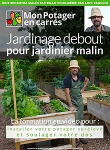 Construire Potager Surélevé : jardinage debout un guide pratique qui soulage le mal de dos ~ Melissatoandfro.com Idées de Décoration