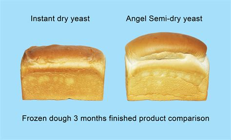 dough procedure new solutions frozen dough procedure for bakery news angel yeast co ltd