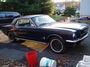 Ford Mustang 1964 : 1964 ford mustang overview cargurus ~ Medecine-chirurgie-esthetiques.com Avis de Voitures