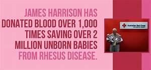 BLOOD DONATION ... Blood Donation Malayalam Quotes