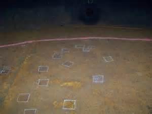 Magnetic Flux Tank Floor Inspection